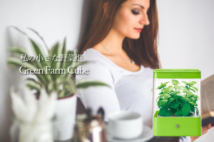 ユーイング Green Farm Cube (グリーンファームキューブ) グリーン 型番UH-CB01G1
