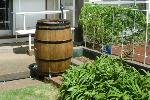 ワイン樽アントワネット230リットル アメリカンポンプ付き
